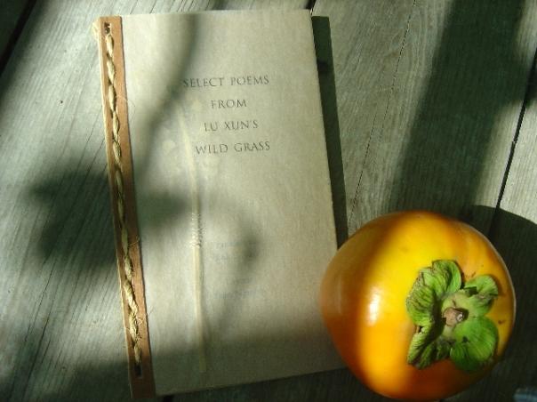 Book Cover –Lu Xun's WildGrass